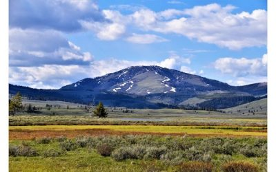 Looming Concerns about Montana's Clean and Healthful Environment