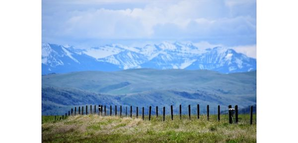 Montana's Clean and Healthful Environment'